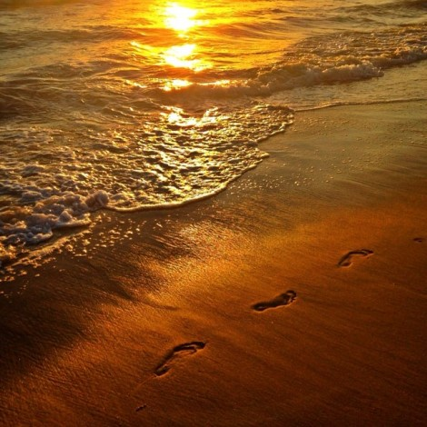 """Don't ask God to direct your steps if you're not willing to move your feet."" ️ #FootPrintsInTheSand #LeadMe #ShowMeTheWay #BeWilling #TakeAction #MoveYourFeet #ThisIsYourLife #LiveIt #CreateIt #DreamsComeTrue #GodLovesYou #PrayersAnswered #SunsetLove"